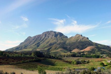 Greetings From De Laer Stellenbosch!